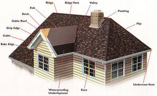 Roof Structure and Design